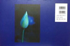 blue lotus2