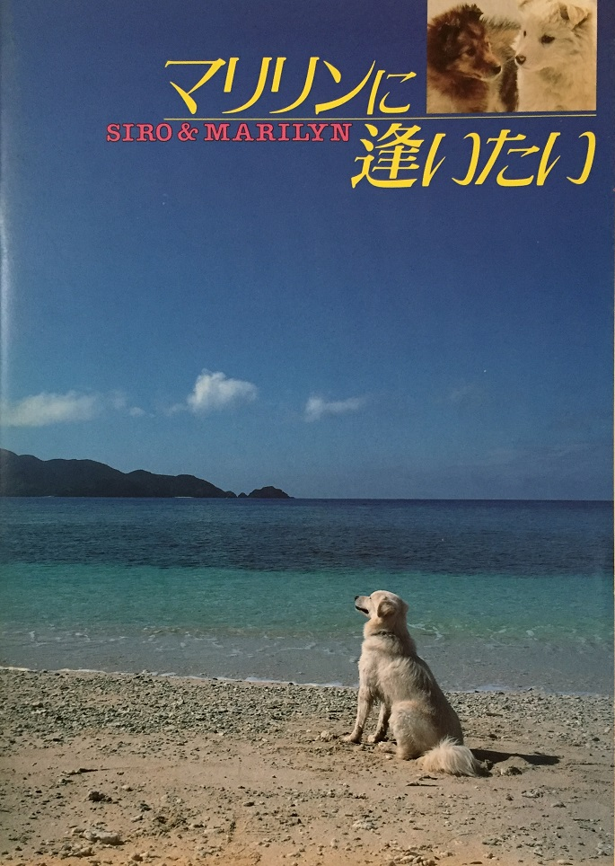 (映画パンフレット)『マリリンに逢いたい』